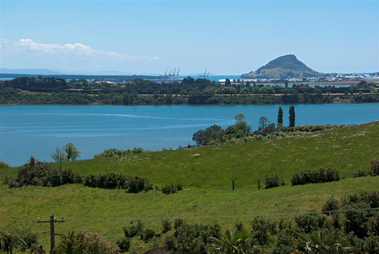 CATHLEEN: Sections for sale tauranga