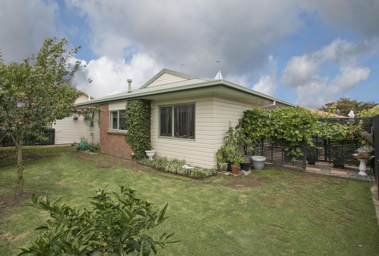 Katikati Property For Sale